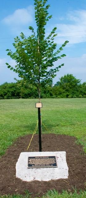 20190704-Cincinnati-SAR-Sons-of-the-American-Revolution-Ohio-Liberty-Tree-Event-01